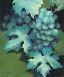 Austrian Grapes–PC