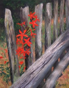 On the Fence-SOLD
